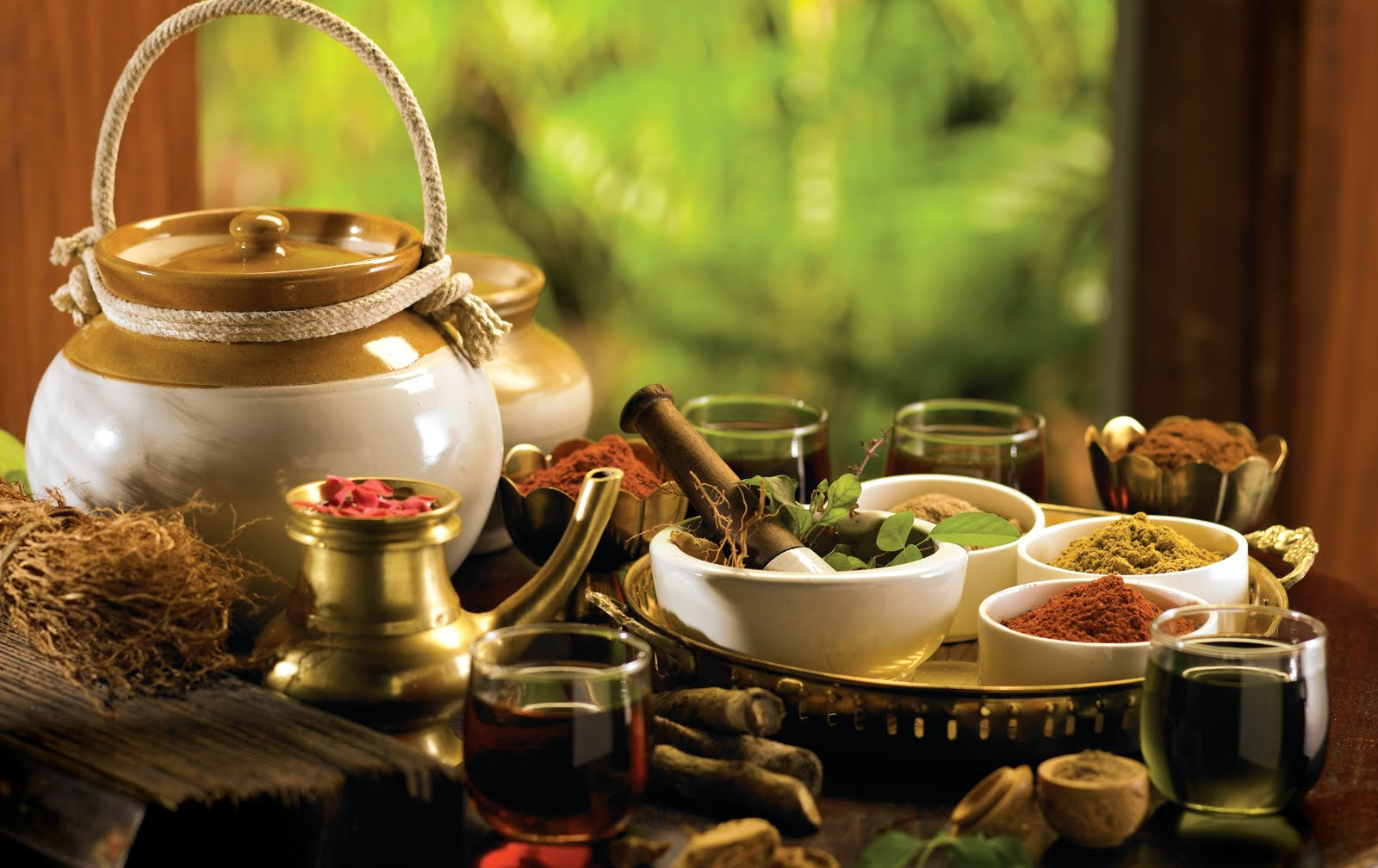 Alternative medicine - ayurveda